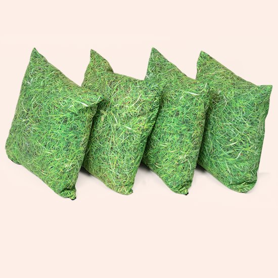 Grass Scatter Cushions